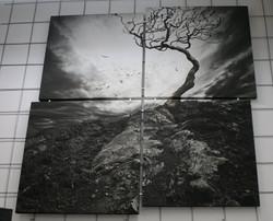 Custom Split Canvas