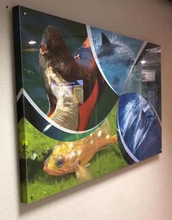 Canvas prints with plexiglass
