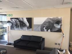 WKH House in Windhoek - Huge canvas prints3