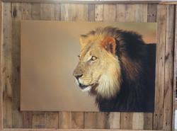 FrameTique canvas on wooden pallets3