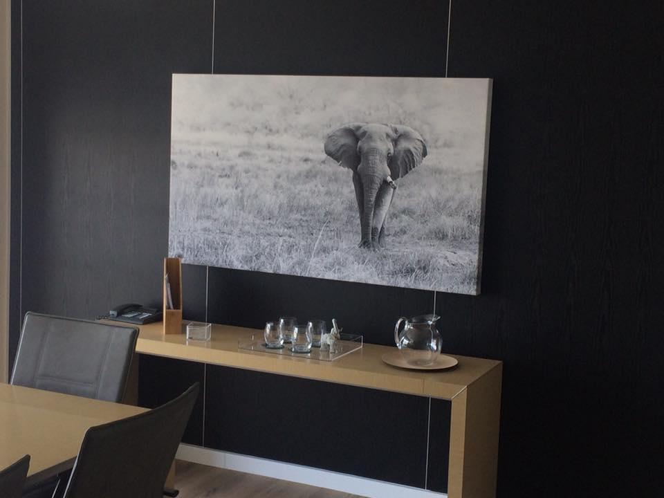 WKH House in Windhoek - Huge canvas prints4