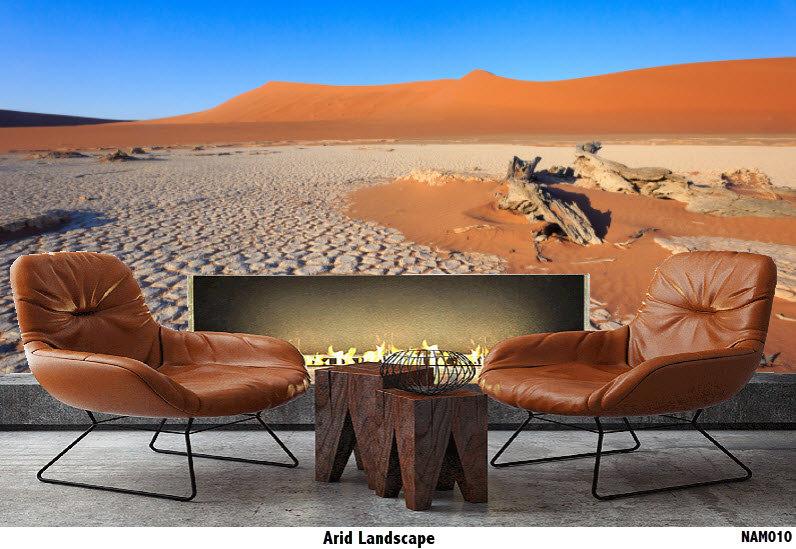 NAM010 Arid Landscape
