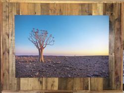 FrameTique canvas on wooden pallets1