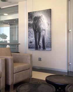 WKH House in Windhoek - Huge canvas prints6