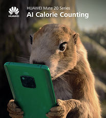 KV_HUAWEI Mate 20 - Count Calories with