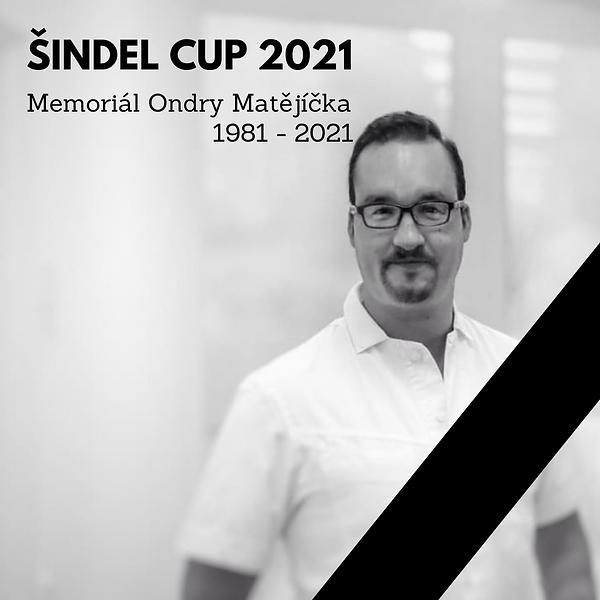 ŠINDEL.png