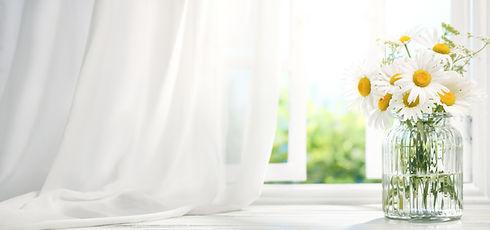 白いカーテンとマーガレット