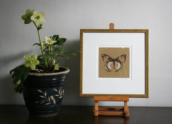 Framed Butterfly II