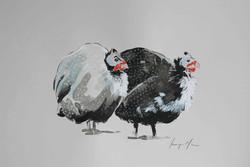 Guinea Fowl I