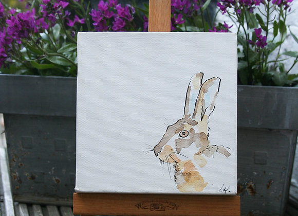 Hare V