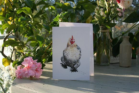 The Strut - Chicken
