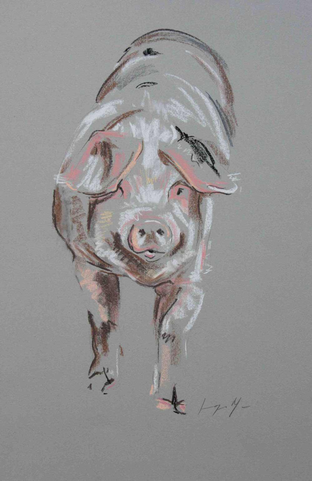 Pig V