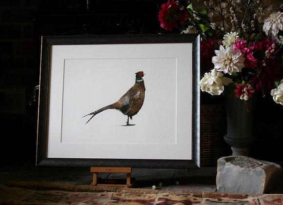 Framed Philip