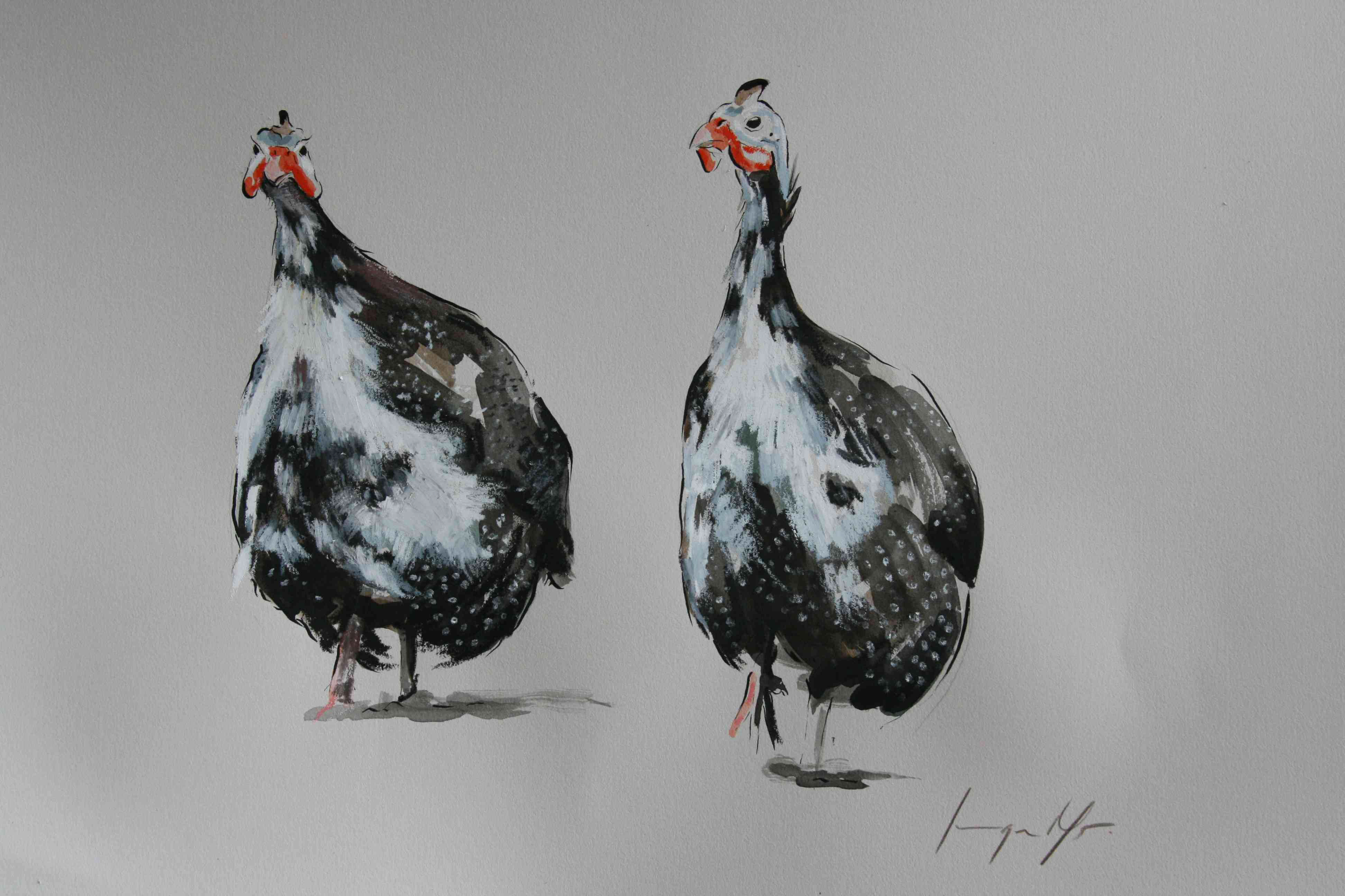 Guinea Fowl II