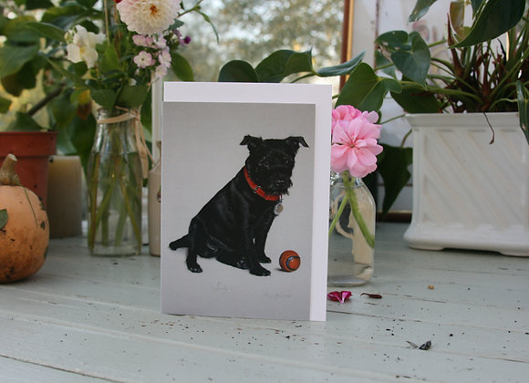 Sooty the Patterdale Terrier