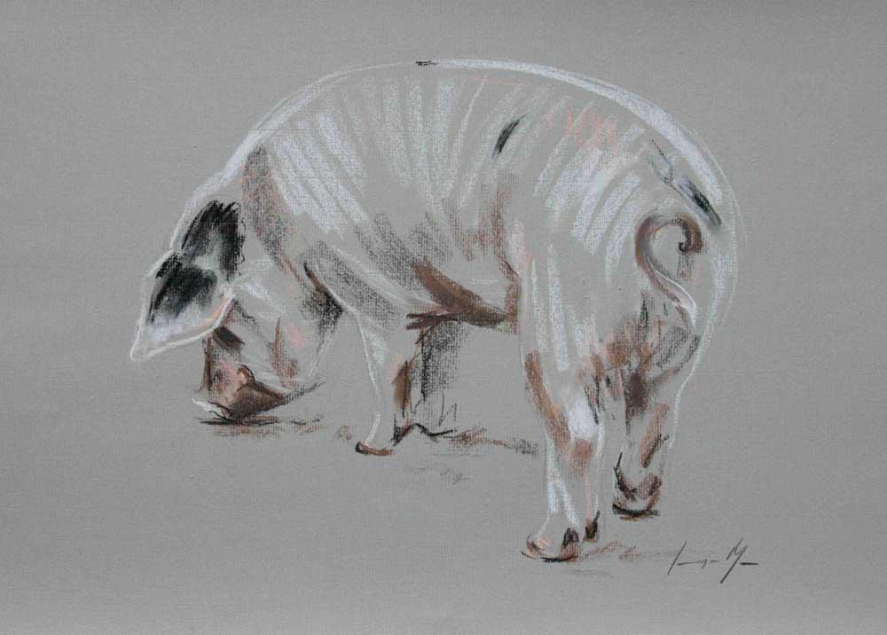 Pig II