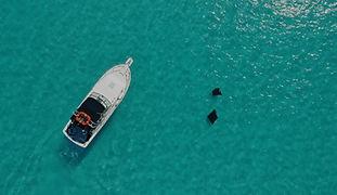 Sea Jay Cruises