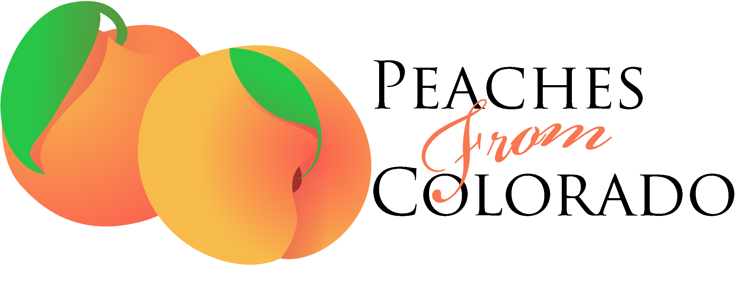 Order Peaches | Fresh Peaches From Colorado