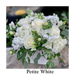 Petite White