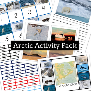 Laura Roudabush - ArcticActivityPack-Mon