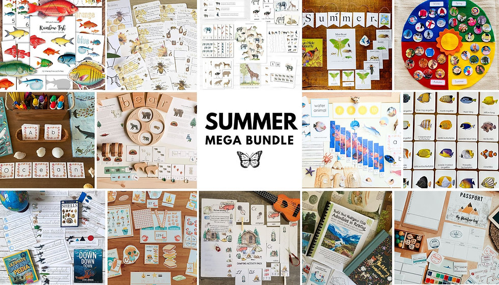 MMB Summer 2021 - Website Banner.jpg