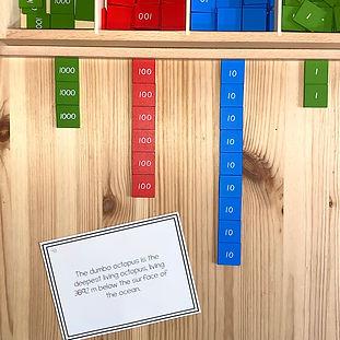 montessori kiwi - numbers in context mon