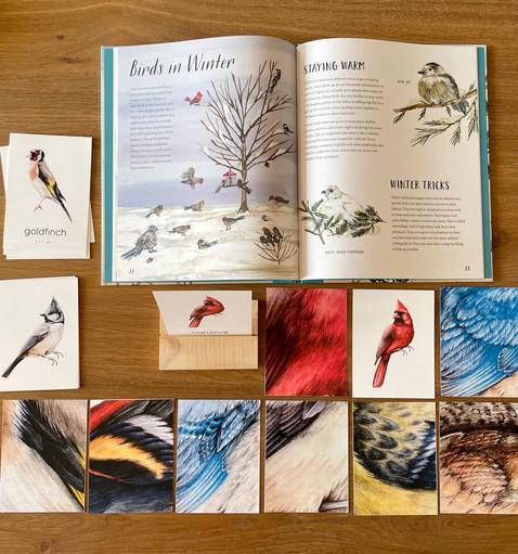 lindie liang - hudson academy_winter birds1.jpeg