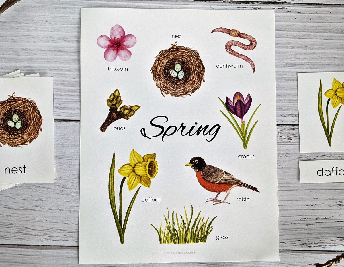 Amber MacKenzie - SPRING MINI POSTER AND