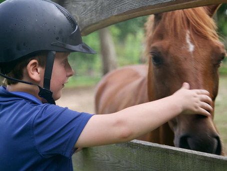 Live, Love, and Learn at Eden Farm's Summer Horse Camp