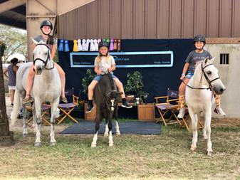 Horse Showing Around with Eden Farm