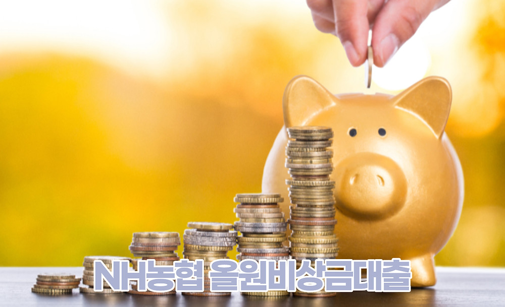 NH농협 올원비상금대출