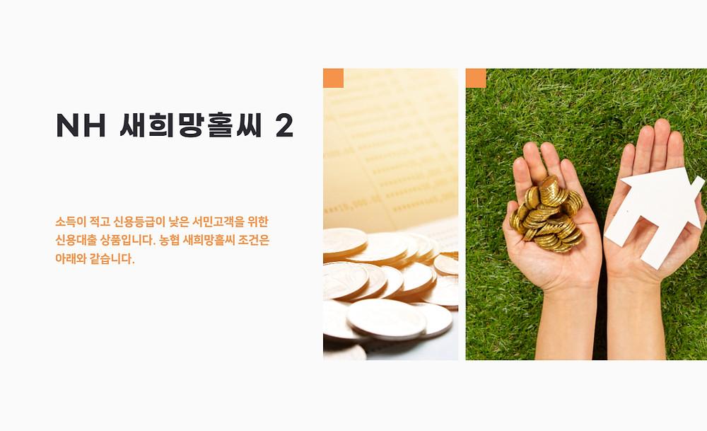 NH 새희망홀씨 2