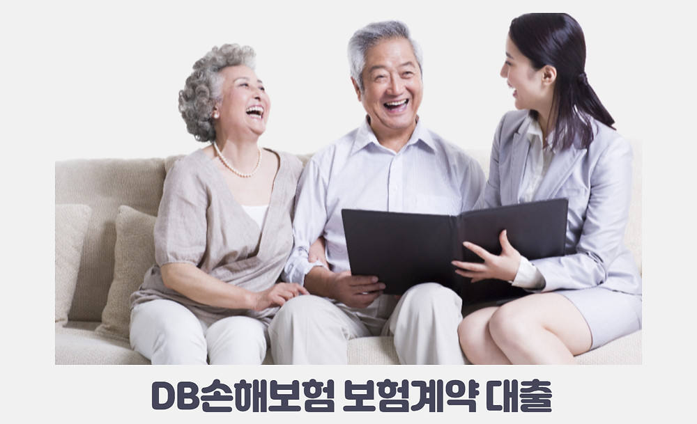 DB손해보험 보험계약 대출