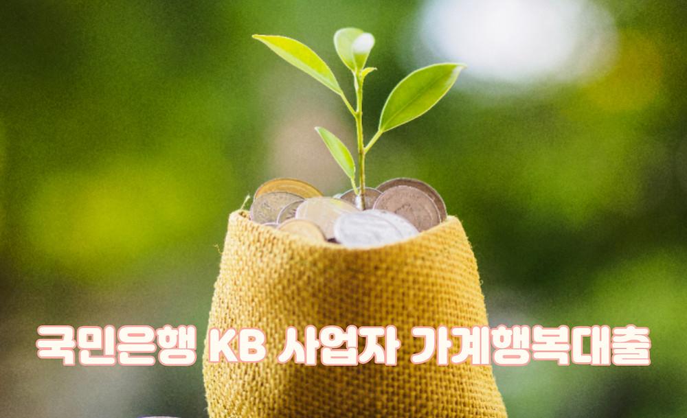 국민은행 KB 사업자 가계행복대출