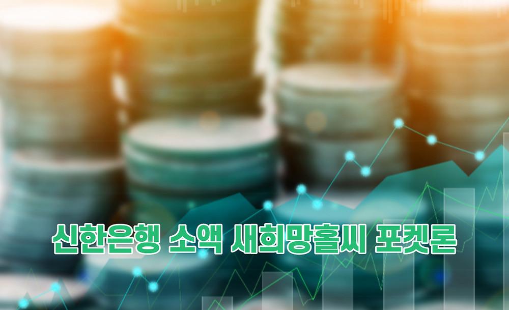 신한은행 소액 새희망홀씨 포켓론
