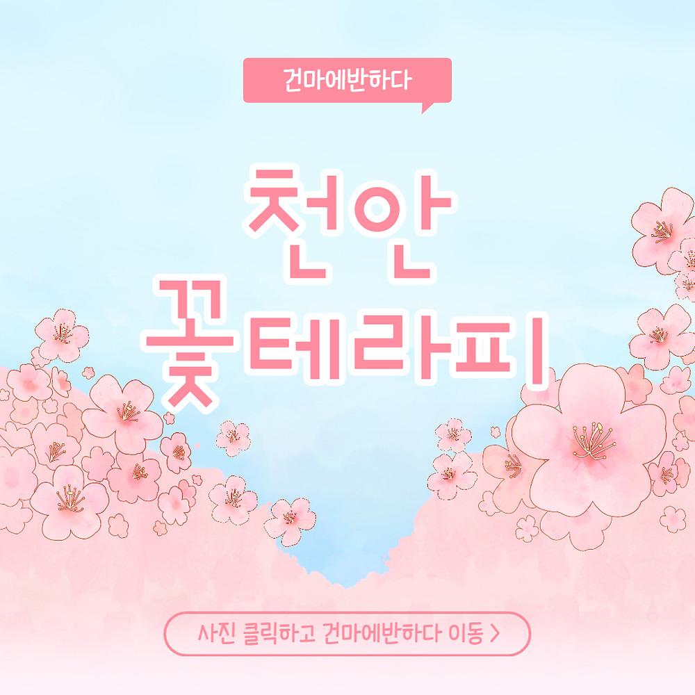 천안 성정동 꽃테라피