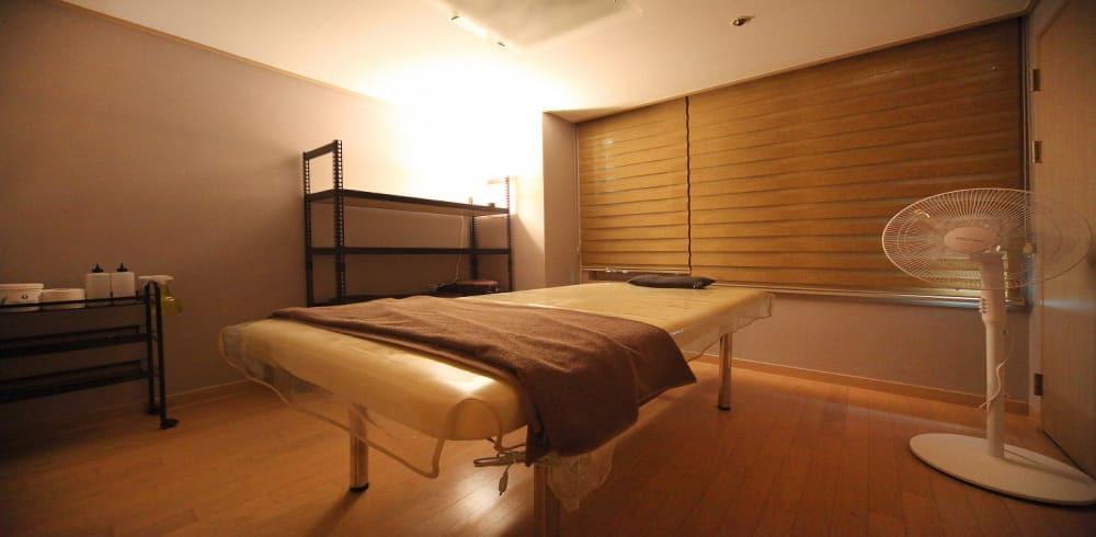 송파 잠실나루역 더샵스웨디시 1인실