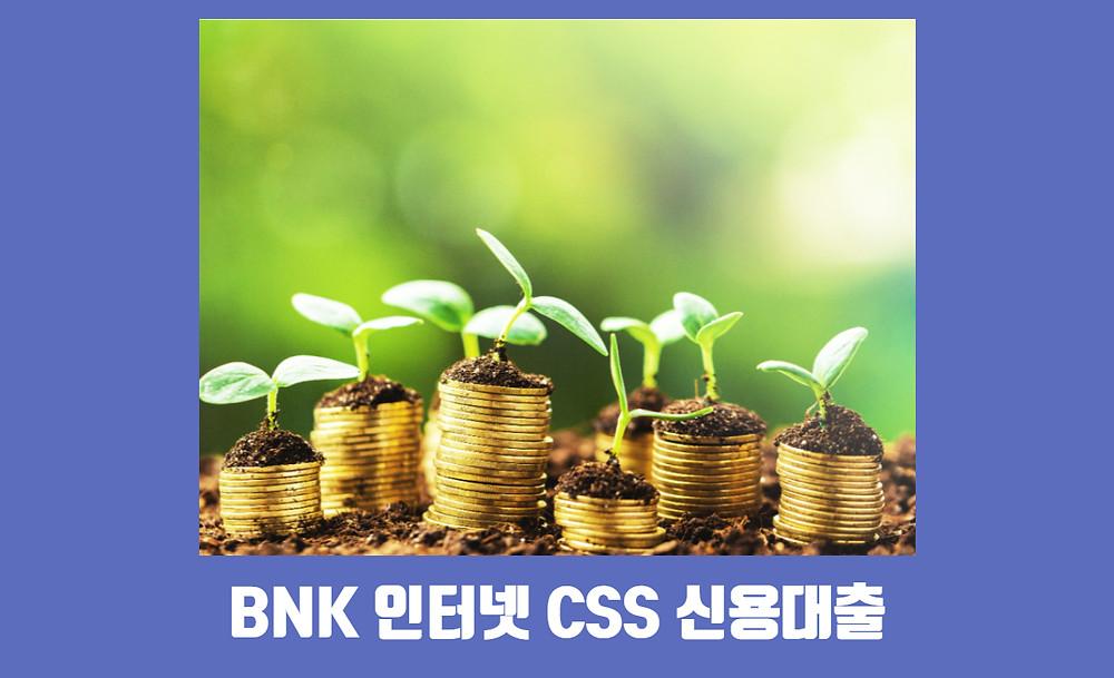BNK 인터넷 CSS 신용대출