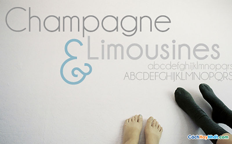 Download Free Font Champagne Limousine