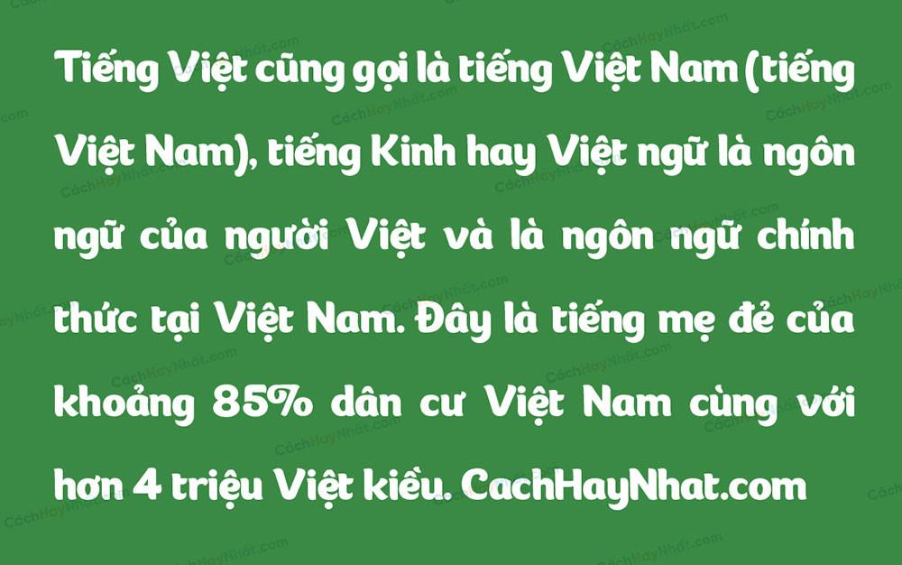 đoạn văn bản mô tả font