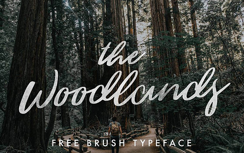Download Phông Chữ Calligraphy - The Woodlands Font