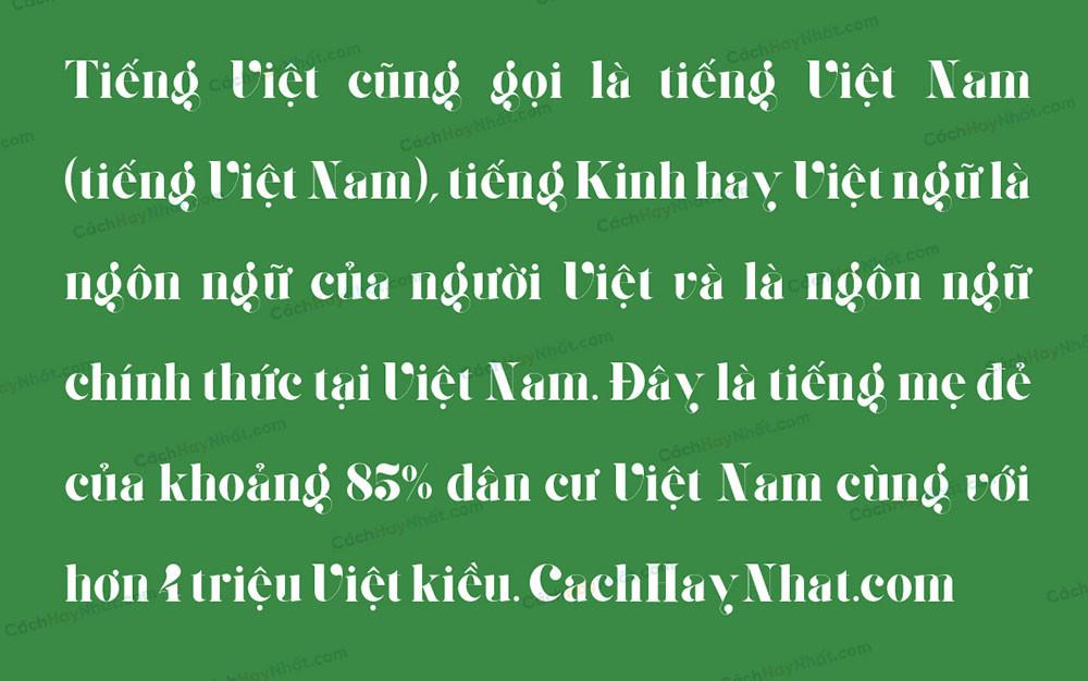 đoạn văn bản mô tả Font SVN Giaza Việt Hóa