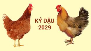 Sinh Năm 2029 Mệnh Gì? Tuổi Kỷ Dậu 2029 Hợp Màu Gì? Hợp Tuổi Gì? Hợp Hướng Nào?