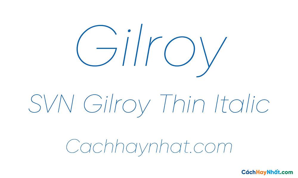 SVN Gilroy Thin Italic