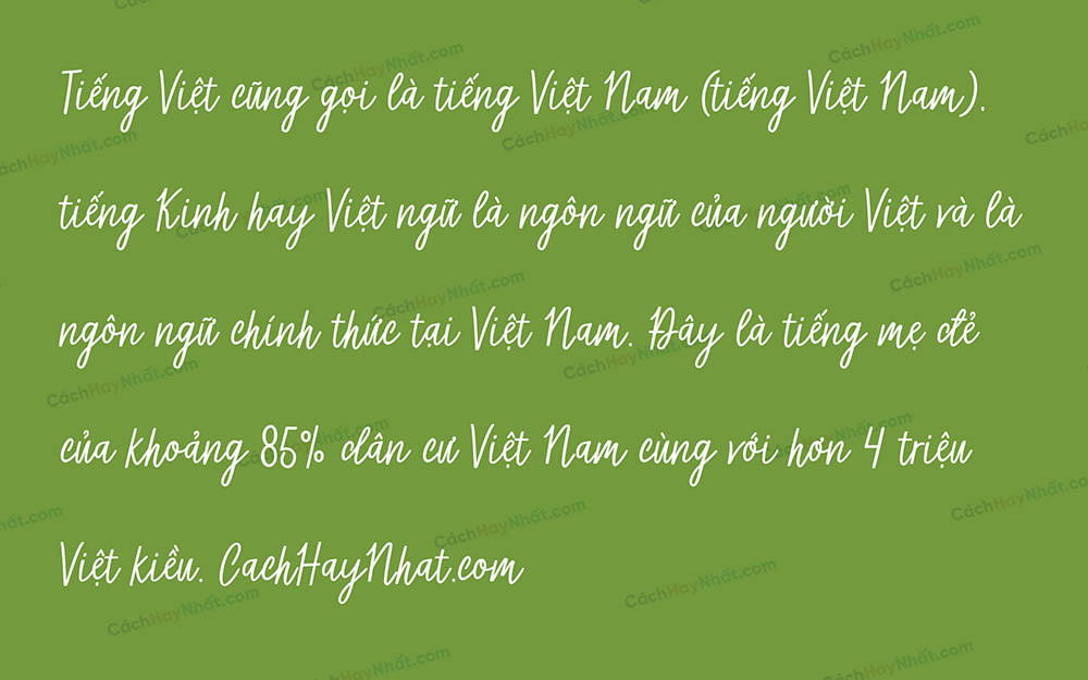 font SVN Micheline Việt hóa