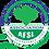 Thumbnail: AFSL ASSOCIATION Logo Vector CDR Corel