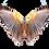 Thumbnail: Đôi Cánh Chim PNG PSD Photoshop 17