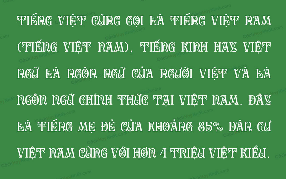 đoạn văn font SVN Secesja Pro Việt hóa