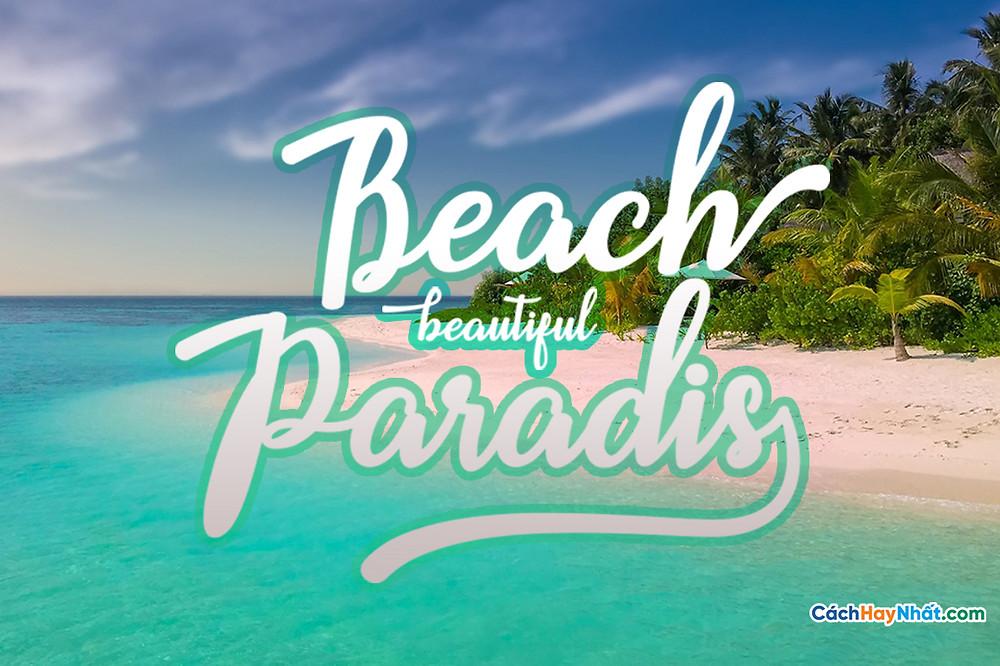Font Beach Script
