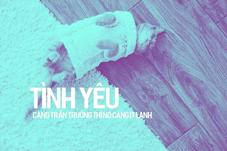Font iCiel Fester Semi-Condensed Bd Việt Hóa
